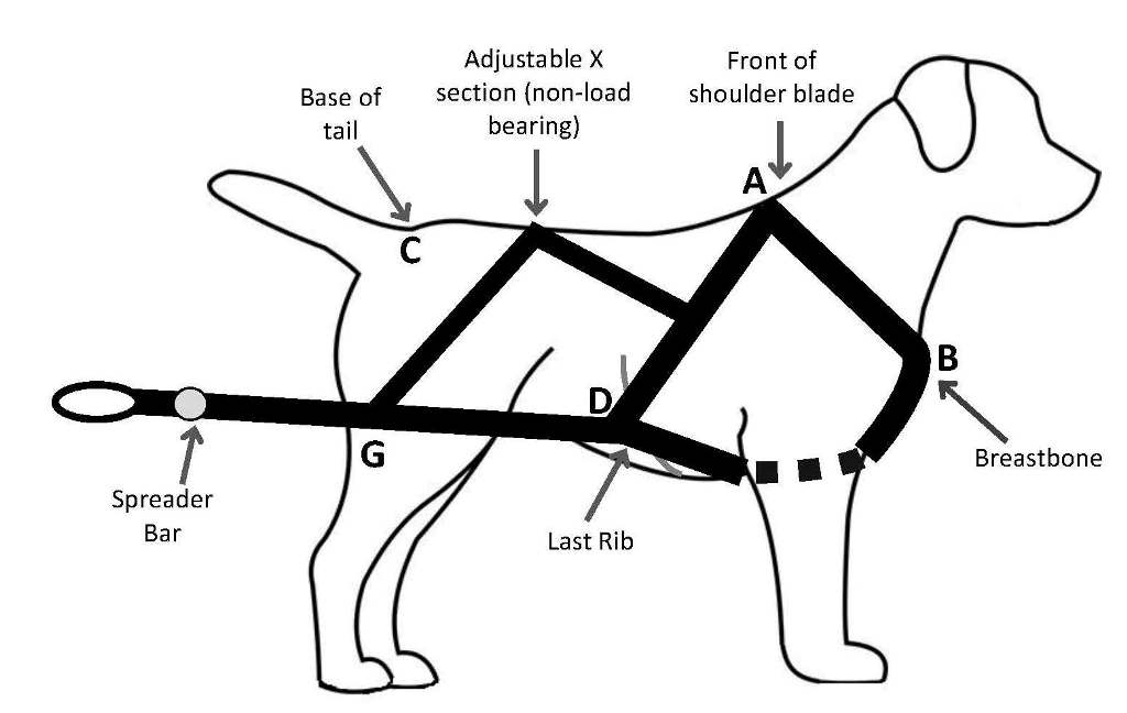 Dog Harness Diagram | Get Free Image About Wiring Diagram